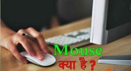 Mouse क्या है और इसे हिंदी में क्या कहते हैं?
